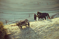 ROMANIA, 1981..Plowing in the mist..ROUMANIE, 1981..Labours dans la brume..© Andrei Pandele / EST&OST