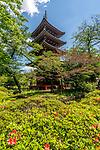 The Kaneiji Temple five story Pagoda at Ueno Park, Tokyo, Japan