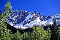 Bonney Glacier (3,107m) Yoho National Park, Canadian Rockies, BC, British Columbia, Canada
