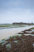 15/1/2021 Flooded farmland in South Lincolnshire  <br /> ©Tim Scrivener Photographer 07850 303986<br />      ....Covering Agriculture In The UK....