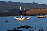 sail boats are the best way to explore the Galapagos archipelago<br /> La croisiere est le seul moyen de decouvrir l archipel des Galapagos. Le voilier est le bateau ideal pour approcher au plus pres les iles..La croisiere est le seul moyen de decouvrir l archipel des Galapagos. Le voilier est le bateau ideal pour approcher au plus pres les iles.