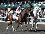 April 05, 2014: Miss Besilu and jockey Corey Lanerie in the Keeneland Ashland Stakes.  Candice Chavez/ESW/CSM