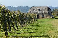 France, Aquitaine, Pyrénées-Atlantiques, Béarn, Coteau du Jurançon, Aubertin:    Vignoble de Jurançon //  France, Pyrenees Atlantiques, Bearn,Slopes of Jurançon, Aubertin: Jurançon vineyard