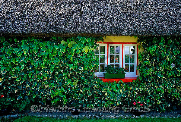 Tom Mackie, LANDSCAPES, LANDSCHAFTEN, PAISAJES, FOTO, photos,+6x7, Adare, cottage, cottages, County Limerick, Eire, EU, Europa, Europe, European, green, horizontal, horizontals, Ireland,+Irish, ivy, medium format, red, thatch, thatched roof, tourist attraction, window, windows,6x7, Adare, cottage, cottages, Cou+nty Limerick, Eire, EU, Europa, Europe, European, green, horizontal, horizontals, Ireland, Irish, ivy, medium format, red, th+atch, thatched roof, tourist attraction, window, windows+,GBTM955362-1,#L#, EVERYDAY ,Ireland