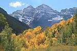 Autumn aspen trees and the Maroon Bells Peaks, near Aspen, Colorado, USA John offers autumn photo tours throughout Colorado. John offers fall foliage photo tours throughout Colorado.