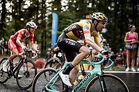 Tom Dumoulin (NED/Jumbo-Visma) up the Col de Porte (final climb to the finish)<br /> <br /> Stage 2: Vienne to Col de Porte (135km)<br /> 72st Critérium du Dauphiné 2020 (2.UWT)<br /> <br /> ©kramon