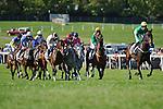 Horses Race in The Morven Park Training Flat Race  at  Morven Park in Leesburg, VA  on 10/08/11.  (Ryan Lasek / Eclipse Sportwire)