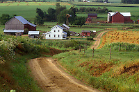 Ohio, Holmes County, amish, farm, A Amish farm with a red barn down a dirt road in Holmes County. A golden wheat field is being harvested.