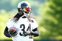 2016 Pittsburgh Steelers
