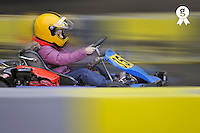 Girl (9) driving a go-cart on a race track (Licence this image exclusively with Getty: http://www.gettyimages.com/detail/85985804 )