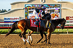 """DEL MAR, CA  AUGUST 28 :#1 Ginobili, ridden by Drayden Van Dyke,in the post parade of the Pat O'Brien Stakes (Grade ll) Breeders Cup """"Win and You're In"""" Dirt Mile Division on August 28, 2021 at Del Mar Thoroughbred Club in Del Mar, CA.  (Photo by Casey Phillips/Eclipse Sportswire/CSM)"""