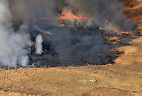 Wildfire at Lake Minnequa Park, Pueblo, Colorado. Dec 2012.  JC80983
