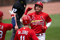 St. Louis Cardinals Dylan Carlson (3) is greeted by Harrison Bader (48) and Paul DeJong (11) after hitting a home run during a Major League Spring Training game against the Houston Astros on March 20, 2021 at Roger Dean Stadium in Jupiter, Florida.  (Mike Janes/Four Seam Images)