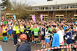 2014-02-23 Hampton Court 15 SD rem