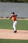 2010 UA Texas (burnt orange)