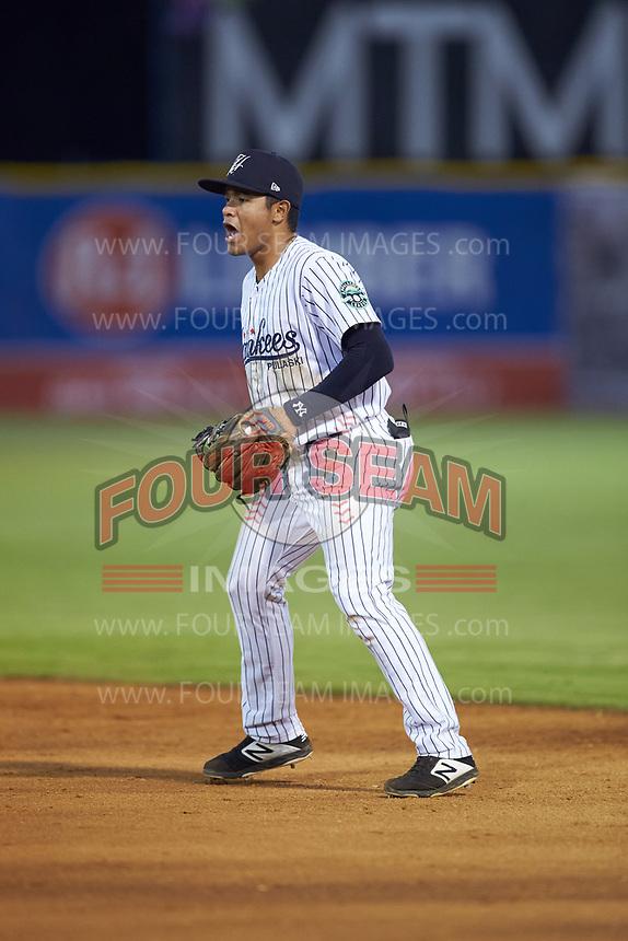 Pulaski Yankees second baseman Luis Santos (13) on defense against the Burlington Royals at Calfee Park on August 31, 2019 in Pulaski, Virginia. The Yankees defeated the Royals 6-0. (Brian Westerholt/Four Seam Images)