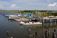 Southern Cross Sea Farm. A commercial clam hatchery located in Cedar Key, Florida, USA, Atlantic Ocean