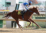 Pure Fun and Victor Lebron win the 2nd race at Churchill Downs.  November 24, 2012.