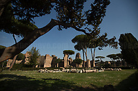 Terme Di Caracalla - Bath Of Caracalla At The Time Of Smartphones