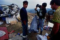 Sarajevo / Bosnia Erzegoviva / BIH 1995.Alcuni rom impegnati nella raccolta di rifiuti..Foto Livio Senigalliesi..Sarajevo / BIH 1995.Roma working in a garbage dump..Photo Livio Senigalliesi