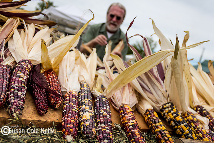 A corn husker at the Common Ground Fair in Unity, Maine, USA