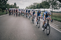 Team Quickstep Floors pacing the peloton<br /> <br /> 97th Brussels Cycling Classic (1.HC)<br /> 1 Day Race: Brussels > Brussels (201km)