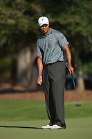 PONTE VEDRA BEACH, FL - MAY 5: Tiger Woods watches his putt on the green of the par 3 8th hole during Tiger's practice round on Tuesday, May 5, 2009 for the Players Championship, beginning on Thursday, at TPC Sawgrass in Ponte Vedra Beach, Florida.