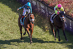 November 3, 2018: Stormy Liberal #9, ridden by Drayden Van Dyke, wins the Breeders' Cup Turf Sprint on Breeders' Cup World Championship Saturday at Churchill Downs on November 3, 2018 in Louisville, Kentucky. Carolyn Simancik/Eclipse Sportswire/CSM