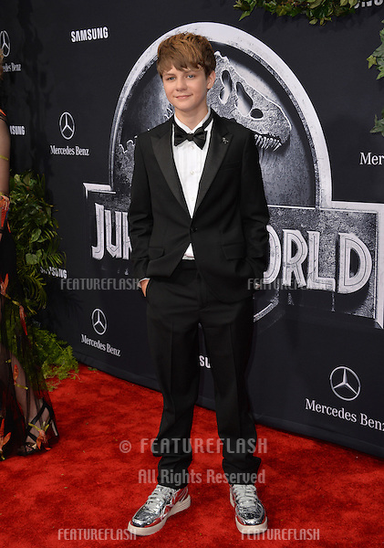 """Actor Ty Simpkins at the world premiere of his movie """"Jurassic World"""" at the Dolby Theatre, Hollywood.<br /> June 10, 2015  Los Angeles, CA<br /> Picture: Paul Smith / Featureflash"""