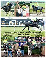 Honey Ryder winning the Robert G. Dick Memorial Breeders' Cup Handicap on 7/17/05 at Delaware Park