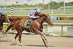 HALLANDALE BEACH, FL - APRIL 01: Truth or Else takes the Sir Shackelton Stakes with Joel Rosario aboard for Trainer Kenneth McPeek on Florida Derby Day at Gulfstream Park on April 01, 2017 in Hallandale Beach, Florida. (Photo by Carson Dennis/Eclipse Sportswire/Getty Images)