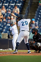 Tampa Tarpons Alexander Palma (29) bats during a Florida State League game against the Jupiter Hammerheads on July 26, 2019 at George M. Steinbrenner Field in Tampa, Florida.  Tampa defeated Jupiter 2-0.  (Mike Janes/Four Seam Images)