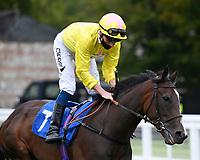 Flirty Rascal ridden by Kieran Shoemark goes down to the start of The Irish Stallion Farms EBF Fillies' Nursery Stakes       during Horse Racing at Salisbury Racecourse on 11th September 2020