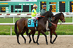 February 21, 2015: Daddy's Kid with Xavier Perez up in the Fairgrounds Handicap at the New Orleans Fairgrounds Risen Star Stakes Day. Steve Dalmado/ESW/CSM