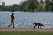 Woman walking a dog, Kensington Gardens, London.