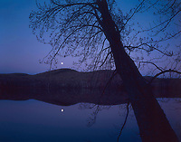 Moonrise over Thirteenth Lake with a Red Maple in the foreground in the Adirondack Mountains in New York state
