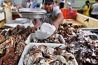 A Panamanian fish vendor wraps lobster tails at Mercado de Mariscos seafood and fish market in Panama City, Panama, 1 February 2015.