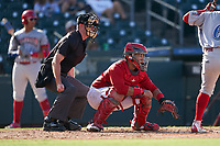 Umpire Taylor Payne and Palm Beach Cardinals catcher Ivan Herrera (34) during a Florida State League game against the Clearwater Threshers on August 10, 2019 at Roger Dean Chevrolet Stadium in Jupiter, Florida.  Clearwater defeated Palm Beach 11-4.  (Mike Janes/Four Seam Images)