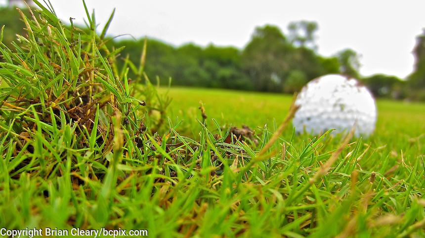 Golf ball and ball mark in the 14th fairway, Daytona Beach Golf Course, Daytona Beach, Florida, July 2014.  (Photo by Brian Cleary/www.bcpix.com)