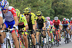 The peloton including Mikel Nieve (ESP) Mitchelton-Scott in action during the 99th edition of Milan-Turin 2018, running 200km from Magenta Milan to Superga Basilica Turin, Italy. 10th October 2018.<br /> Picture: Eoin Clarke | Cyclefile<br /> <br /> <br /> All photos usage must carry mandatory copyright credit (© Cyclefile | Eoin Clarke)