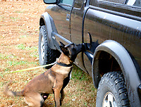 Marc Hayot/Herald Leader K9 Duke located drugs hidden in the fuel compartment of an abandoned vehicle.