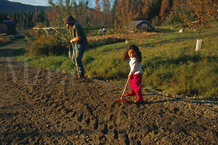 Three year old girl raking soil with her father.