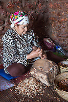 Morocco.  Arab Woman Cracking Argan Nuts for Producing Argan Oil.