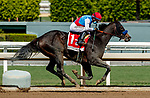 ARCADIA, CA  SEP 26: #1 Princess Noor, ridden by Victor Espinoza, is all alone on her way to winning the Chandelier Stakes (Grade ll) on September 26, 2020 at Santa Anita Park in Arcadia, CA. . (Photo by Casey Phillips/Eclipse Sportswire/CSM.