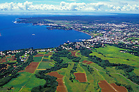 Aerial view looking to the ocean of Hilo town on the big island.