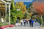 Italien, Suedtirol, Meran: Herbstspaziergang entlang der Winterpromenade | Italy, South-Tyrol, Alto Adige, Merano: autumn walk along Winter Promenade