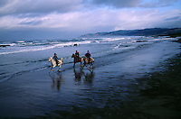 Horses gallop on Ten Mile Beach, a scenic quiet stretch along the northern California coast. Ricochet Ranch organizes trail rides for locals and tourists on the Mendocino coast.