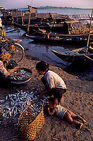 Small Fish market early morning at the banks of the Mekong River, Phnom Penh Cambodia