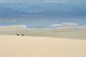 Follow the leader. Coffin Bay South Australia