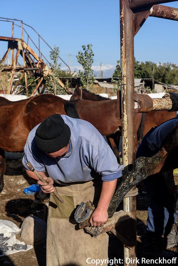 Hufschmied auf dem Viehmarkt in Karakol, Kirgistan, Asien<br /> horseshoer at cattle market in Karakol, Kirgistan, Asia